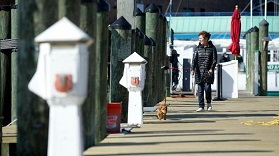 Alise Webb of Annapolis walks her dog Scooby and watches as boats head towards City Dock for the Annapolis Spring Sailboat Show on Wednesday, April 18, 2018. (Jen Rynda / Capital Gazette)